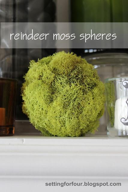 DIY moss spheres