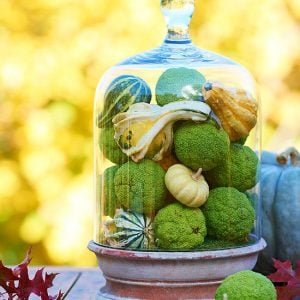 Decorating with Pumpkins and Gourds