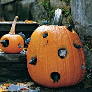DIY Halloween Decorations, Ideas & Projects- Mice in Pumpkin