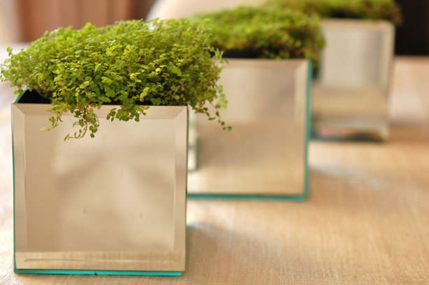 mirrored-planters-by-the-art-of-doing-stuff