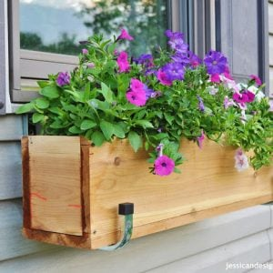 Cedar DIY Window Box Ideas