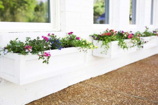 Easy DIY Window Box Ideas & Projects