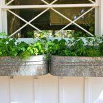 DIY Window Box Projects