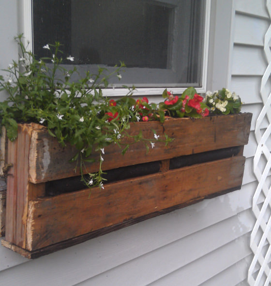 Window Planters: Easy DIY Window Box Ideas & Projects • The Budget Decorator