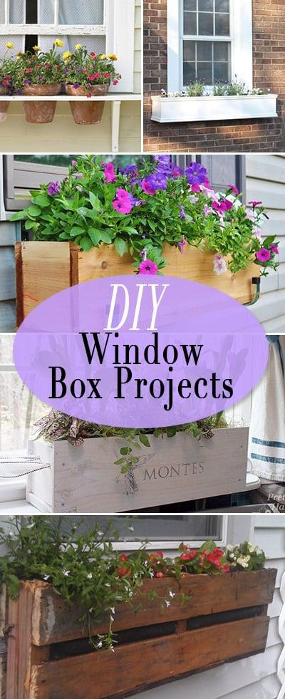 Diy Window Box Ideas Projects The Budget Decorator