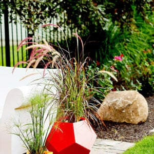 Backyard Ideas on a Budget - Spruce Up Your Garden