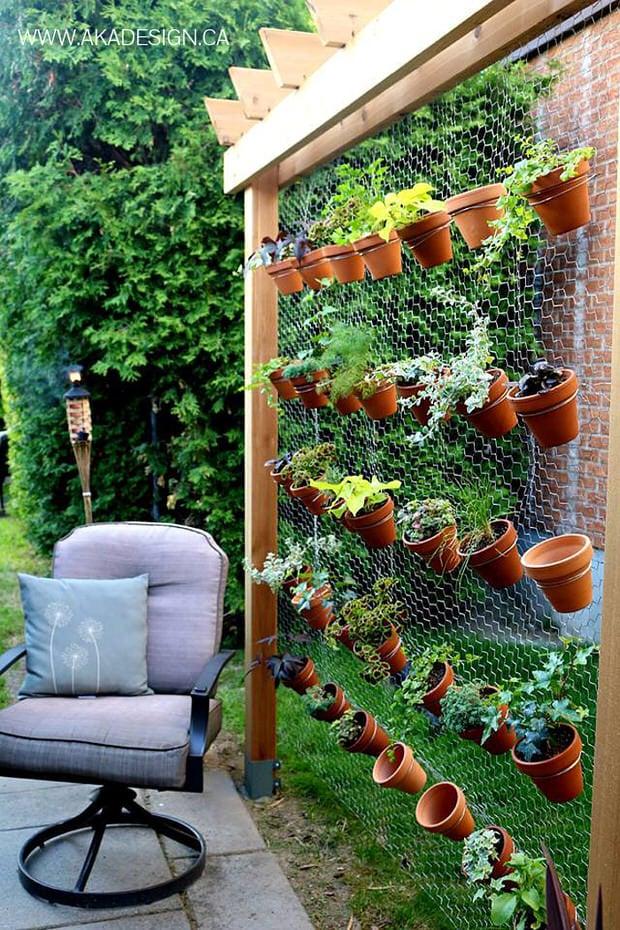 Spruce your garden-6