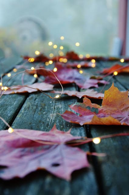 Fall Crafts : DIY Fall Leaf Decor- Fall leaf and lights
