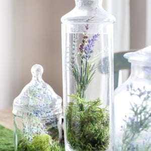16 Lovely Vase Filler Ideas & DIY Apothecary Jars