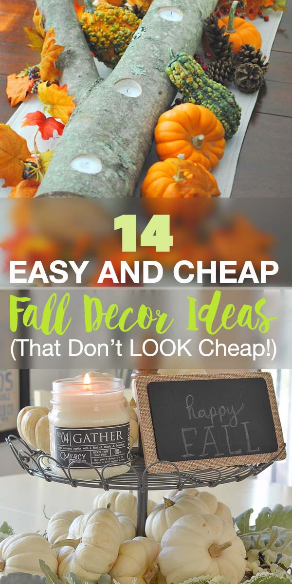 14 Easy and Cheap Fall Decor Ideas (That Don't LOOK Cheap!)